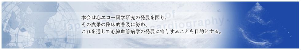 図 心 学会 エコー